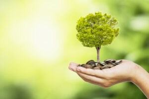 Man hand holding coins and tree look like as planting